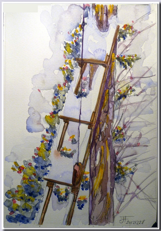 20121228_Ladder