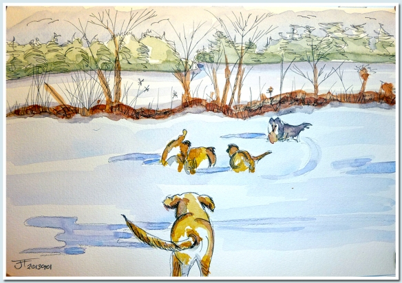 20130101_4Dogs