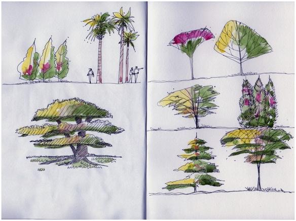 20130221_trees