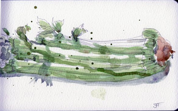 20130515_celery