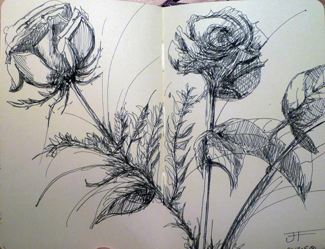 20130530_Roses