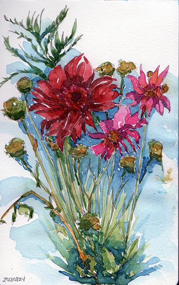 20130824_flowers