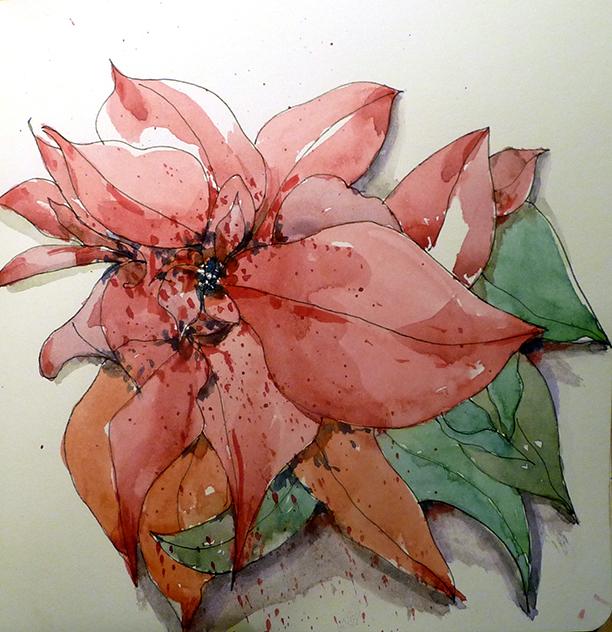 20131223_Poinsettia