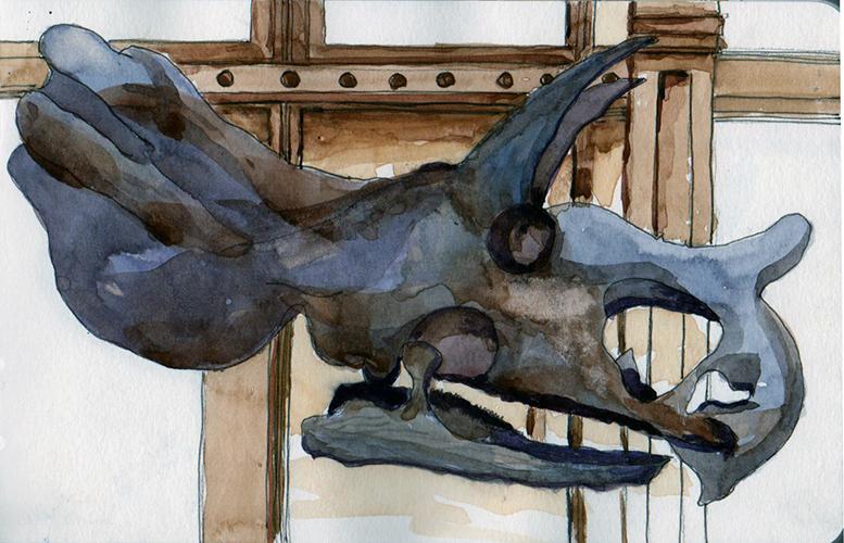 20140126_triceratop