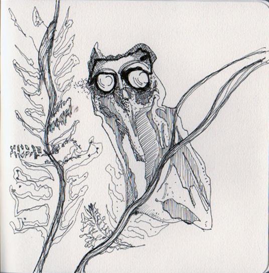 20140223_peterDoig_Owl