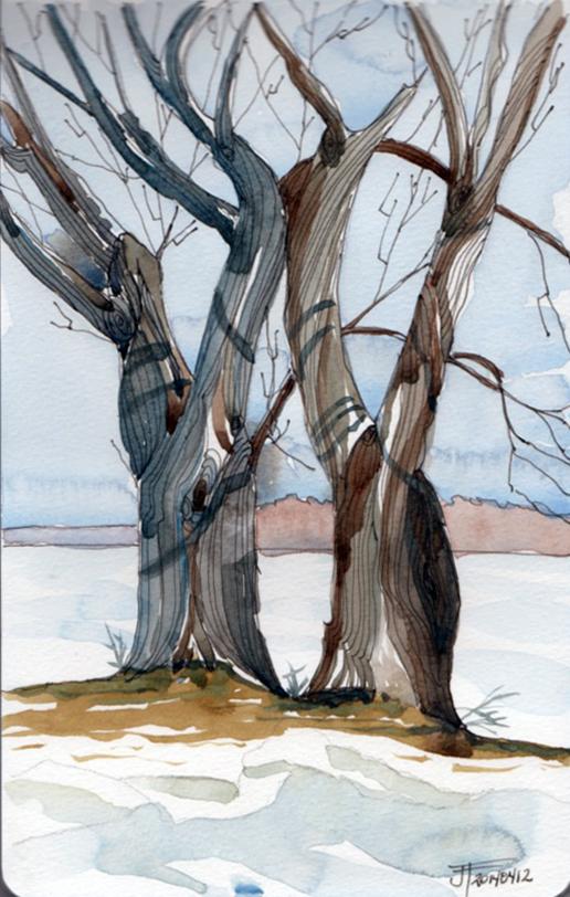 20140412_IntertwinedTrees