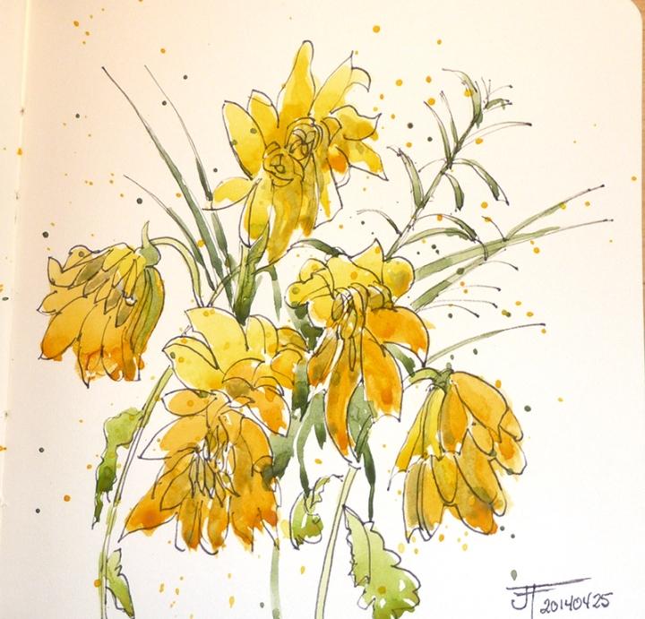 20140425_yellowFlowers