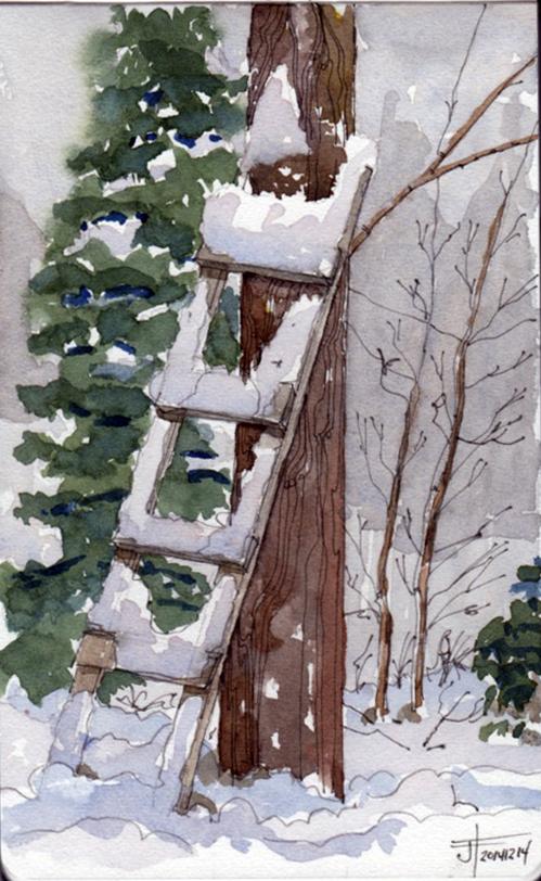 20141214_ladder