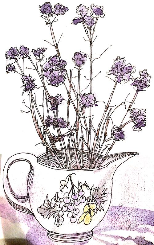 20160223-jane-hannah-drawing-flowers