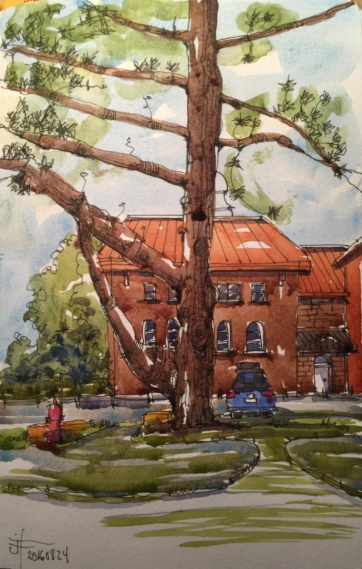 20160824-johnabbott-mcdonald-Building-jane-hannah
