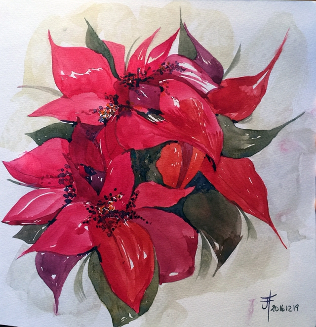 20161219-poinsettia-flower-watercolour-jane-hannah