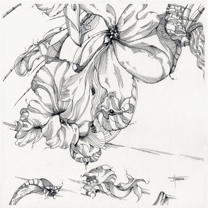 20190710-flowers-KimThuy2-jane-hannah-loRes