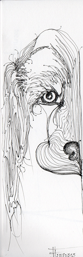 20180303-Pyper-drawing-jane-hannah-loRes