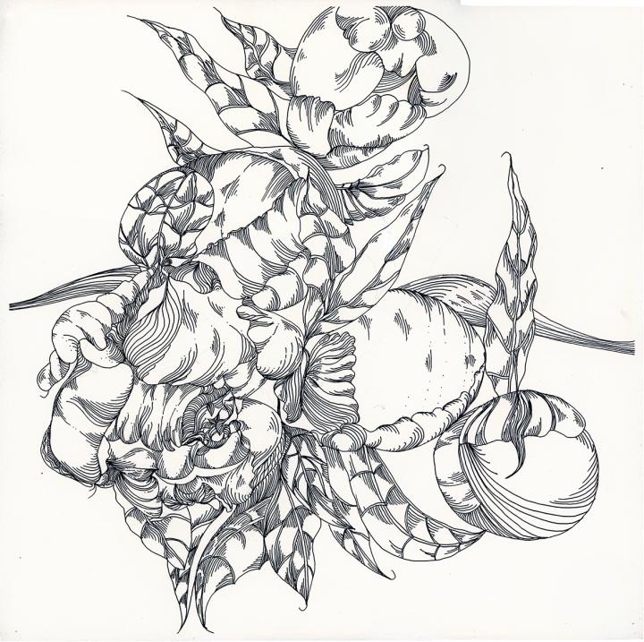 20181005-inktober-chicken-jane-hannah