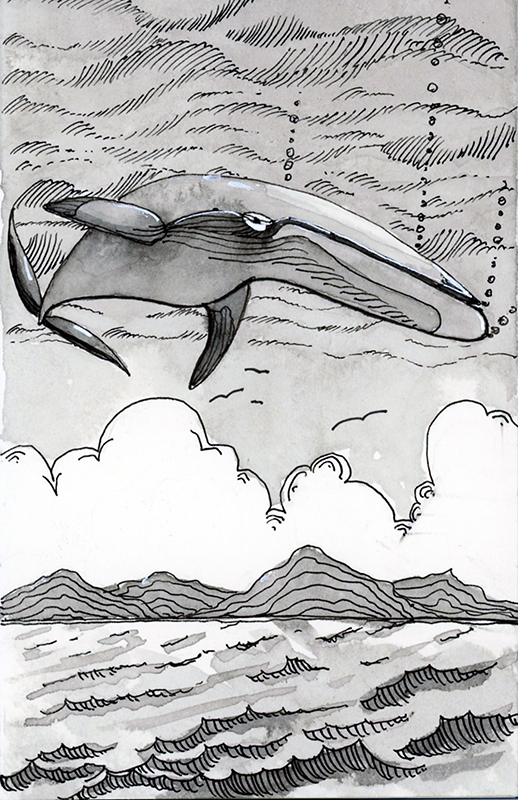 20181013-inktober-whale-jane-hannah-loRes