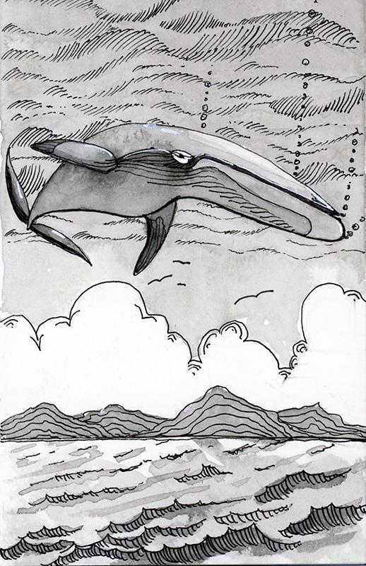 20181013-inktober-whale-jane-hannah-loRes